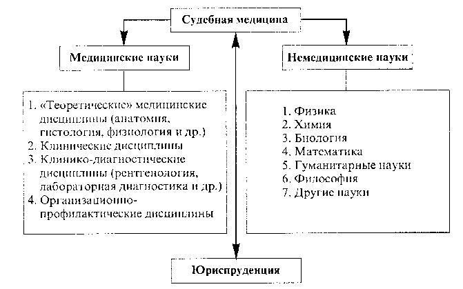 Схема 3. Связь судебной